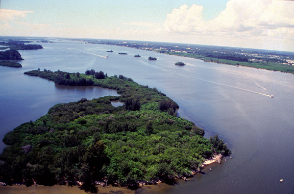 Time to Save the Indian River Lagoon