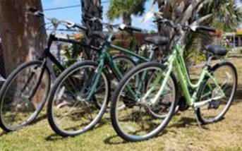 Hybrid Bikes for rent