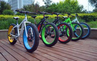 Fat Tire Bikes for Rent