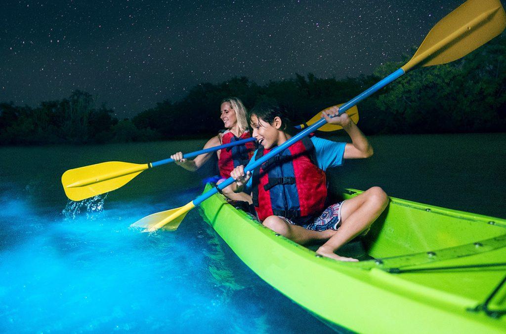 Bioluminescense at night in a kayak