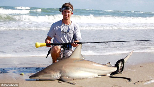 surf-shark-fishing